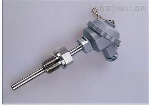 WZPN-230PT100耐磨热电阻