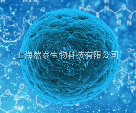 GIBCO Erythromycin红霉素