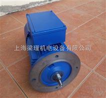 中研紫光刹车电机BMD8024-制动电机-清华紫光三相异步电机